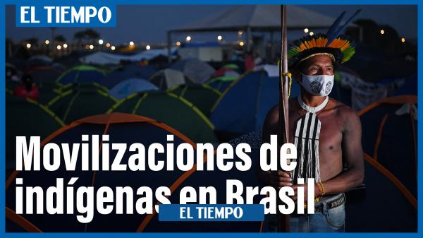 Read more about the article تظاهرات برزیلی های محلی علیه سیاست های بولسونارو